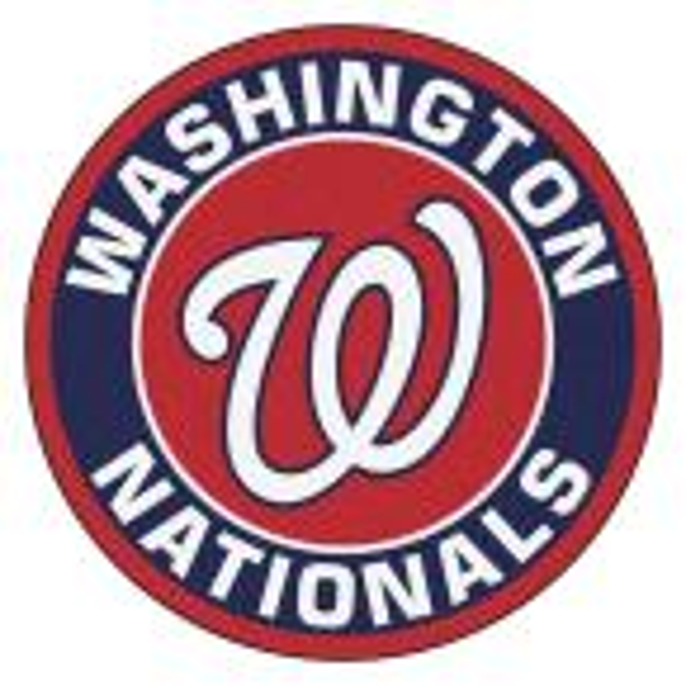 MLB Washington Nationals Navy 2 ft. x 2 ft. Round Area Rug