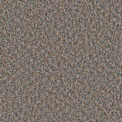 Dream Wish - Color Focus Texture 12 ft. Carpet