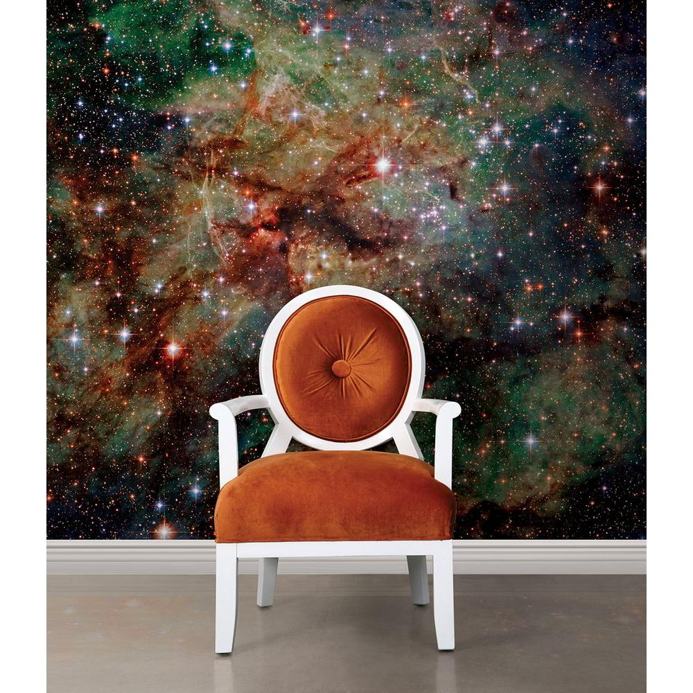 National Geographic 72 In H X 72 In W Nebula Wall Mural Ng1319