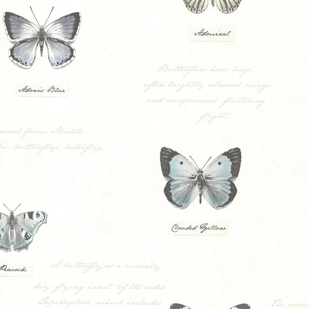 56.4 sq. ft. Admiral Black Butterflies and Script Wallpaper