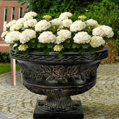 17 in. H. Charcoal Cast Stone Rose Low Urn