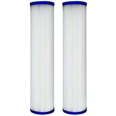 Pleated Poly Whole House Cartridge (2-Pack)