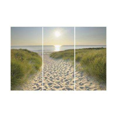 12 in. x 24 in. Beach Walk by Graham and Brown Printed Canvas Wall Art (set of 3)