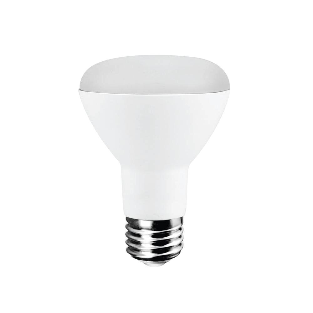 EcoSmart 50W Equivalent Daylight R20 LED Light Bulb-ECS ...