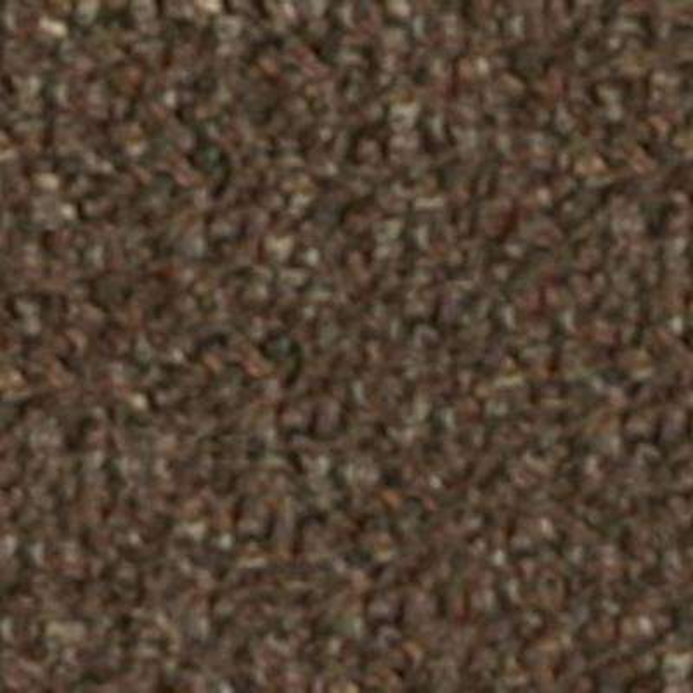 Carpet Sample - Bottom Line 26 - In Color Brown 8 in. x 8 in.