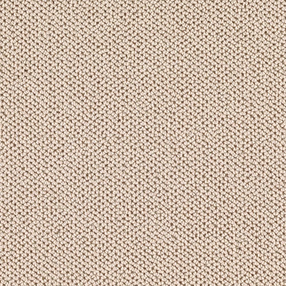 Carpet Sample - Priority - Color Worn Path Loop 8 in. x 8 in.