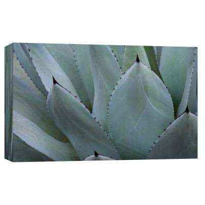 10 in. x 12 in. ''Whale's Tongue Agave'' Printed Canvas Wall Art