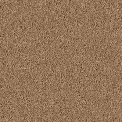 Carpet Sample - Team Builder - In Color Mountain Path 8 in. x 8 in.