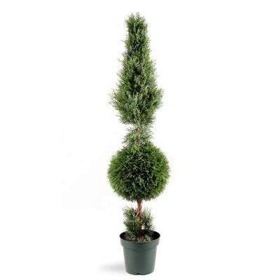 5 ft. Juniper Cone and Ball Topiary Tree in Green Round Plastic Pot