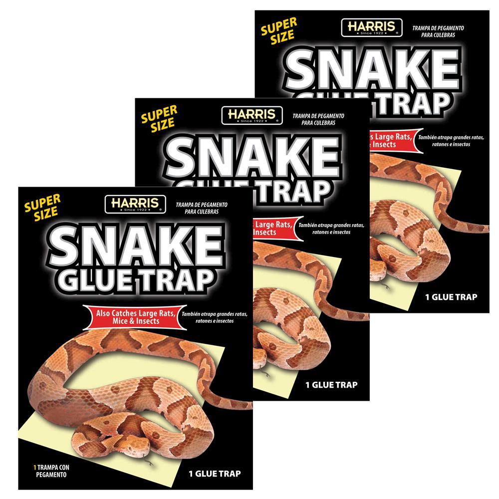 Harris Snake Glue Trap Super Size 3 Pack 3snake 1 The Home Depot