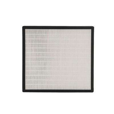 BreatheSmart Fit50 HEPA-Silver Replacement Filter