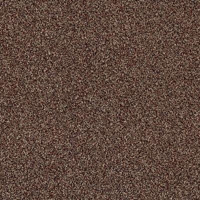 Kaleidoscope I - Color Baked Spice Texture 12 ft. Carpet