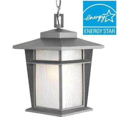 Loyal Collection 1-Light Textured Graphite Fluorescent Outdoor Hanging Lantern