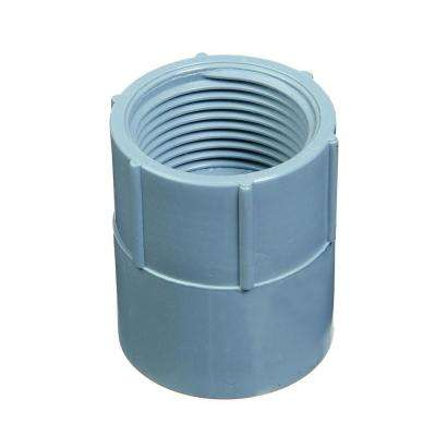 1/2 in. PVC Female Adapter (30 per Case)