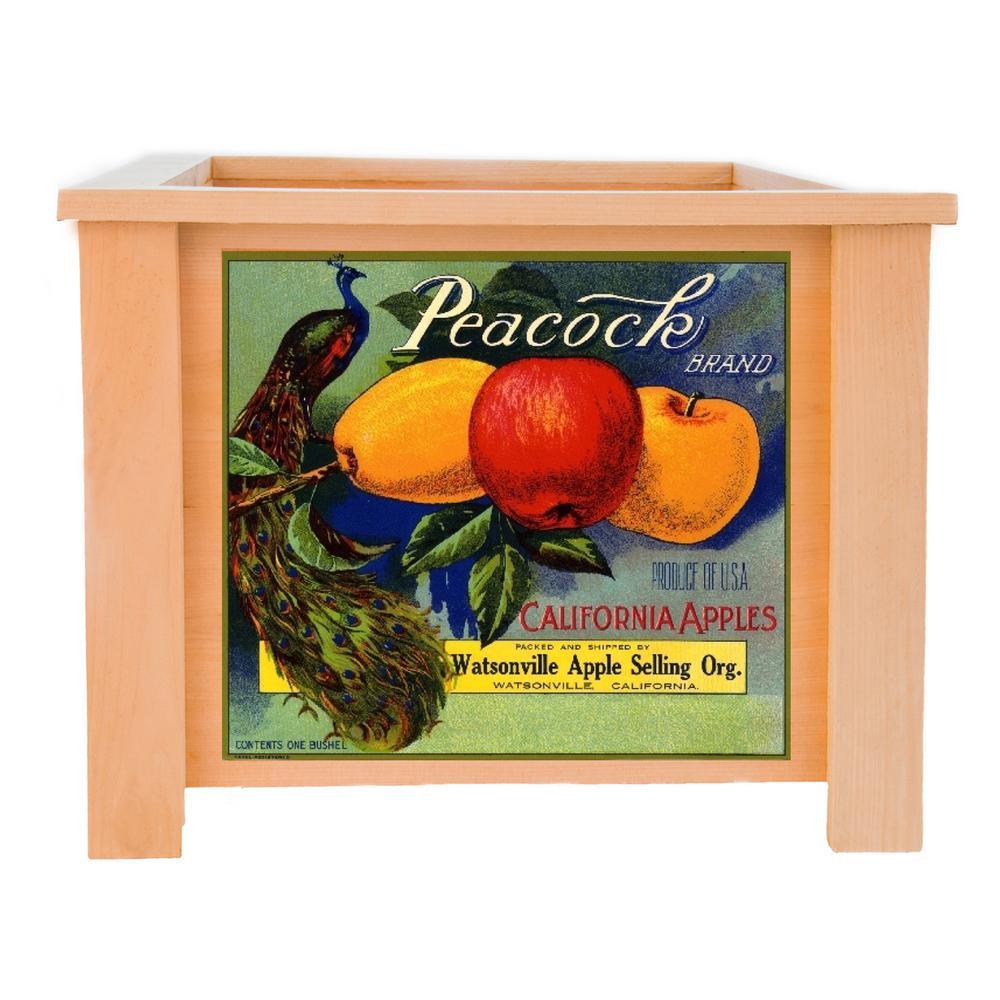 19 in. x 19 in. Deluxe Cedar Planter Box with Peacock Art