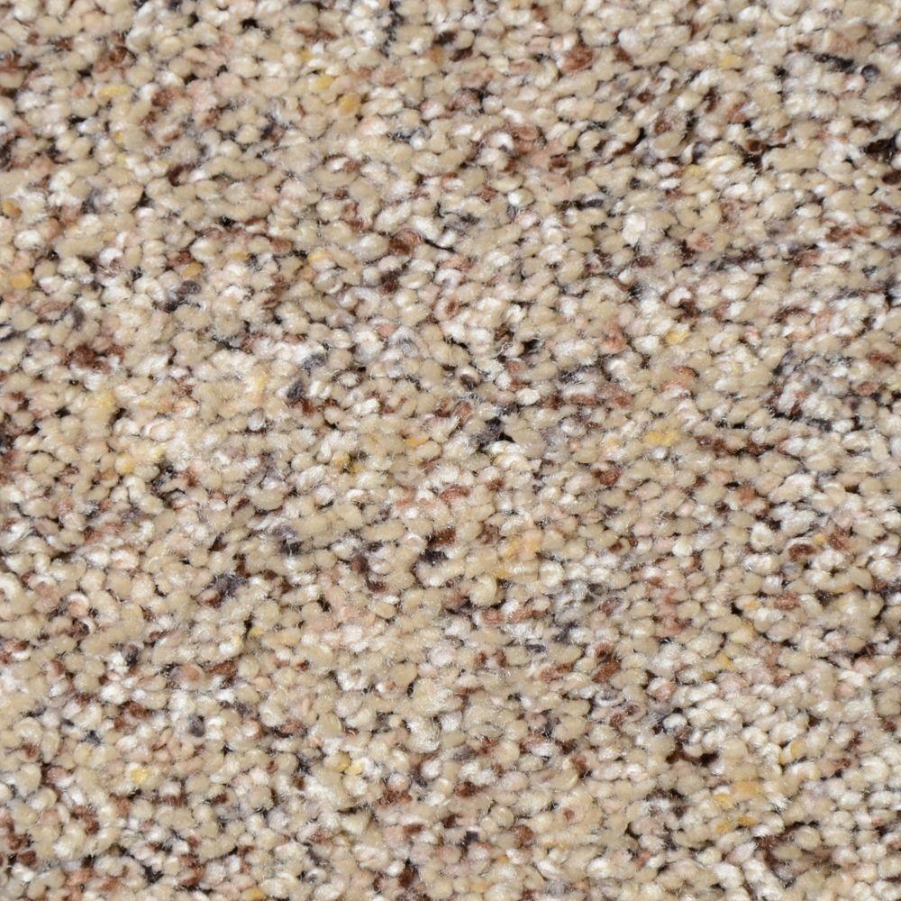 Home Decorators Collection Nevada - Color Golden Chain Texture 12 ft. Carpet