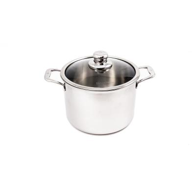 Premium Clad 7.9 qt. Stainless Steel Stock Pot with Glass Lid