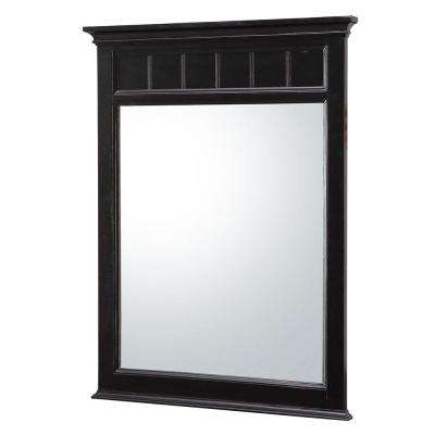 Dunsby 24 in. W x 32 in. H Single Wall Hung Mirror in Espresso