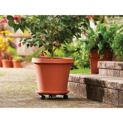 14 in. Terra Cotta Caddie Plant Dolly Plastic Round with Wheels (2-Pack)