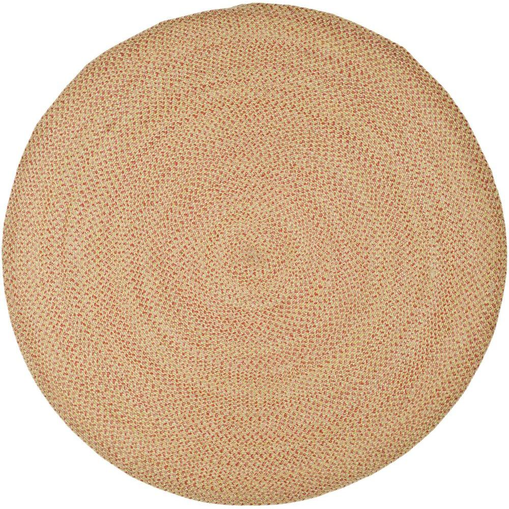 Safavieh Braided Multi 6 ft. x 6 ft. Round Area Rug
