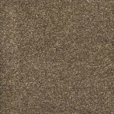 Stryker Court - Color Greystone Texture 12 ft. Carpet