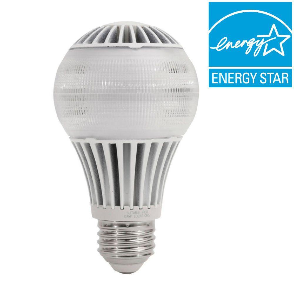 EcoSmart 40W Equivalent Daylight (5000K) A19 LED Light Bulb