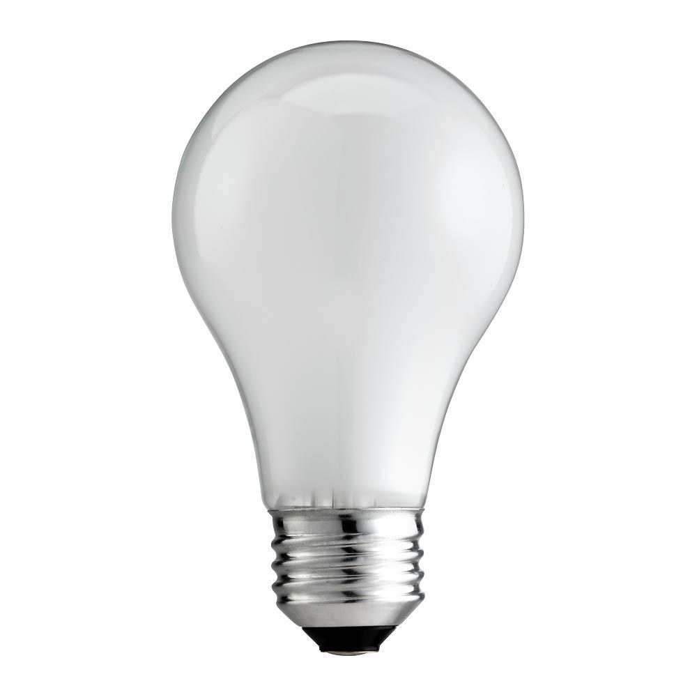 25-Watt A19 Soft White Incandescent Light Bulb (2-Pack)