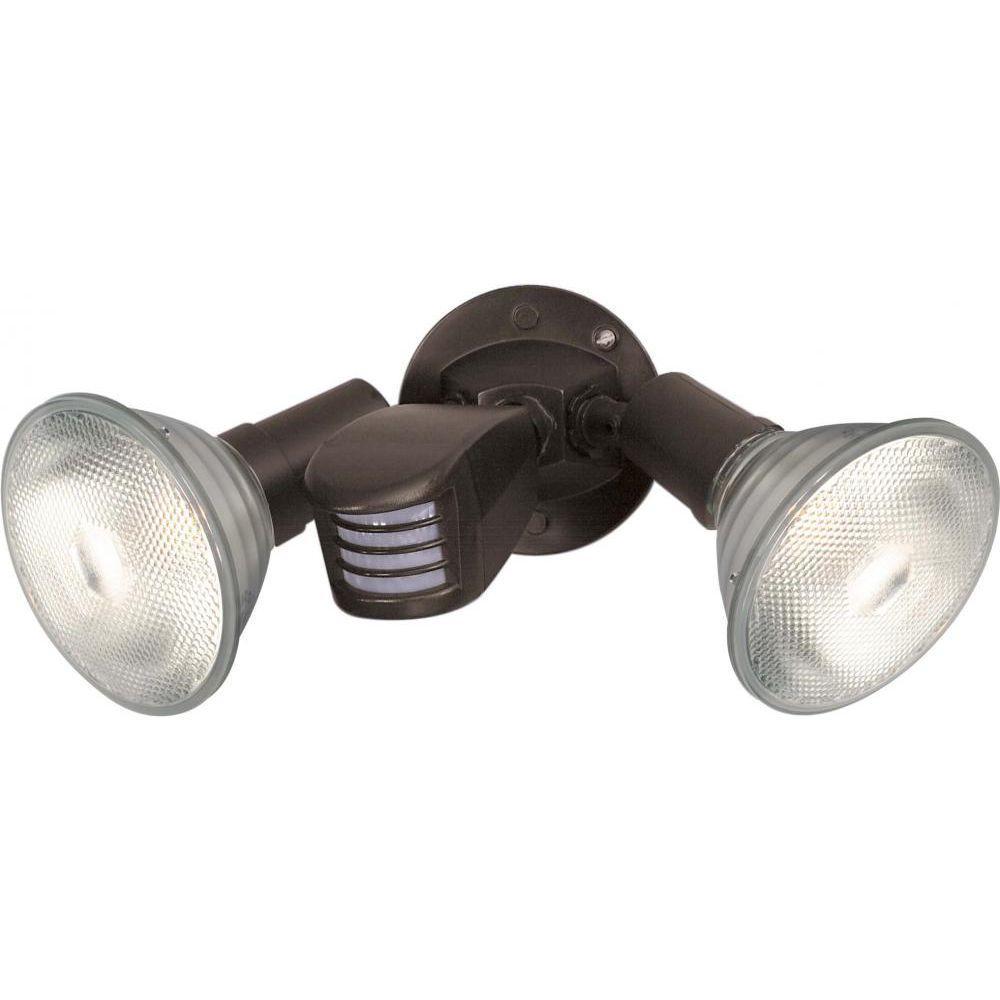 Tony 2-Light Black Flood Light
