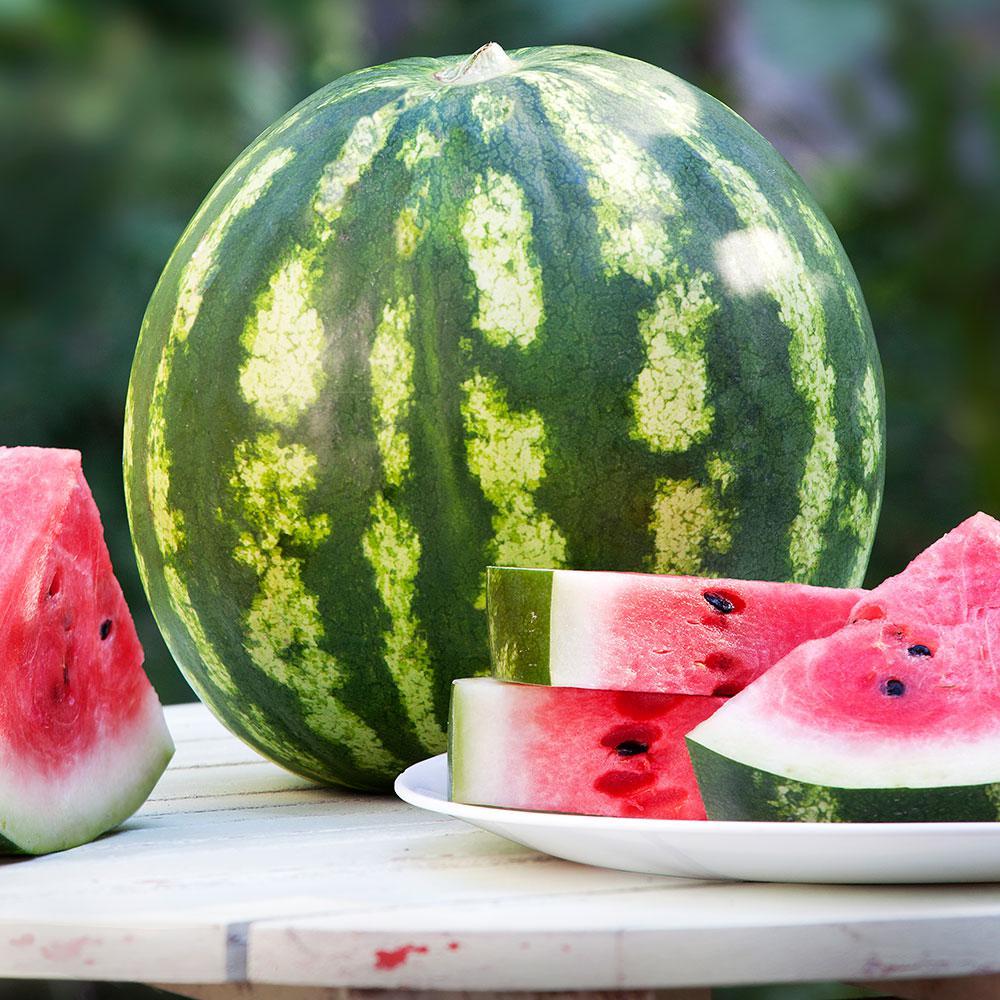 4.5 in. Watermelon-Crimson Sweet