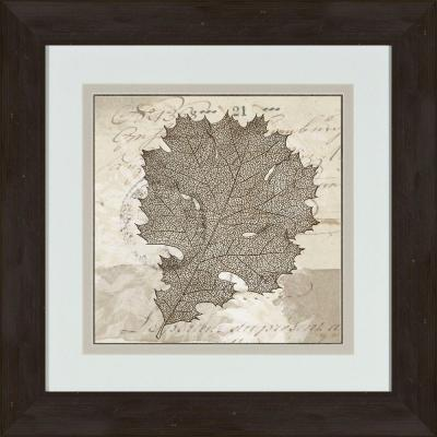 """17 in. x 17 in. """"Sophisticated Botany C"""" Framed Wall Art"""