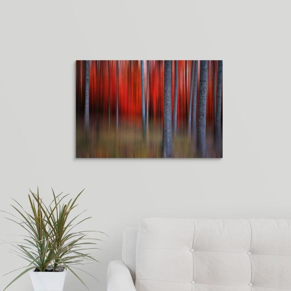 GreatBigCanvas ''Gimick'' by Philippe Sainte-Laudy Canvas Wall Art 1035535_24_24x16
