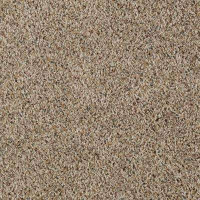 Carpet Sample - Kaa I - Color Cobble Path Texture 8 in. x 8 in.