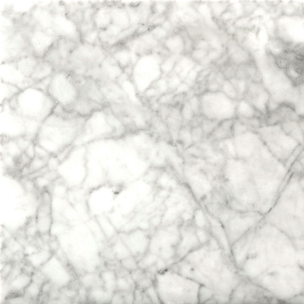 Emser Bianco Gioia 18 in. x 18 in. Marble Floor and Wall Tile (2.25 sq. ft./case)-DISCONTINUED
