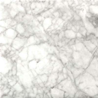 Bianco Gioia 18 in. x 18 in. Marble Floor and Wall Tile (2.25 sq. ft./case)