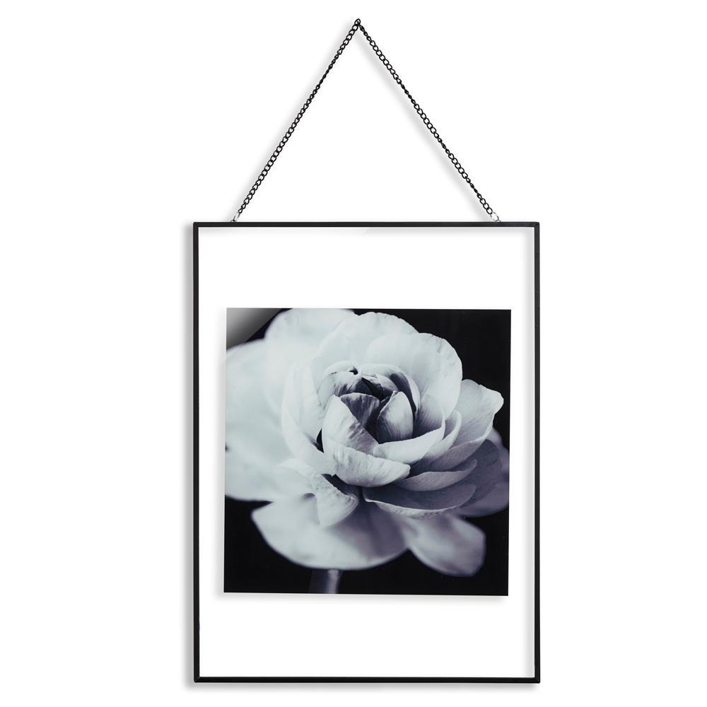 Cabbage Rose Glass Framed Print Wall Art
