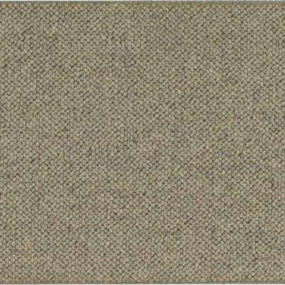Carpet Sample - Ellsbury - Color Cobblestone Loop 8 in. x 8 in.
