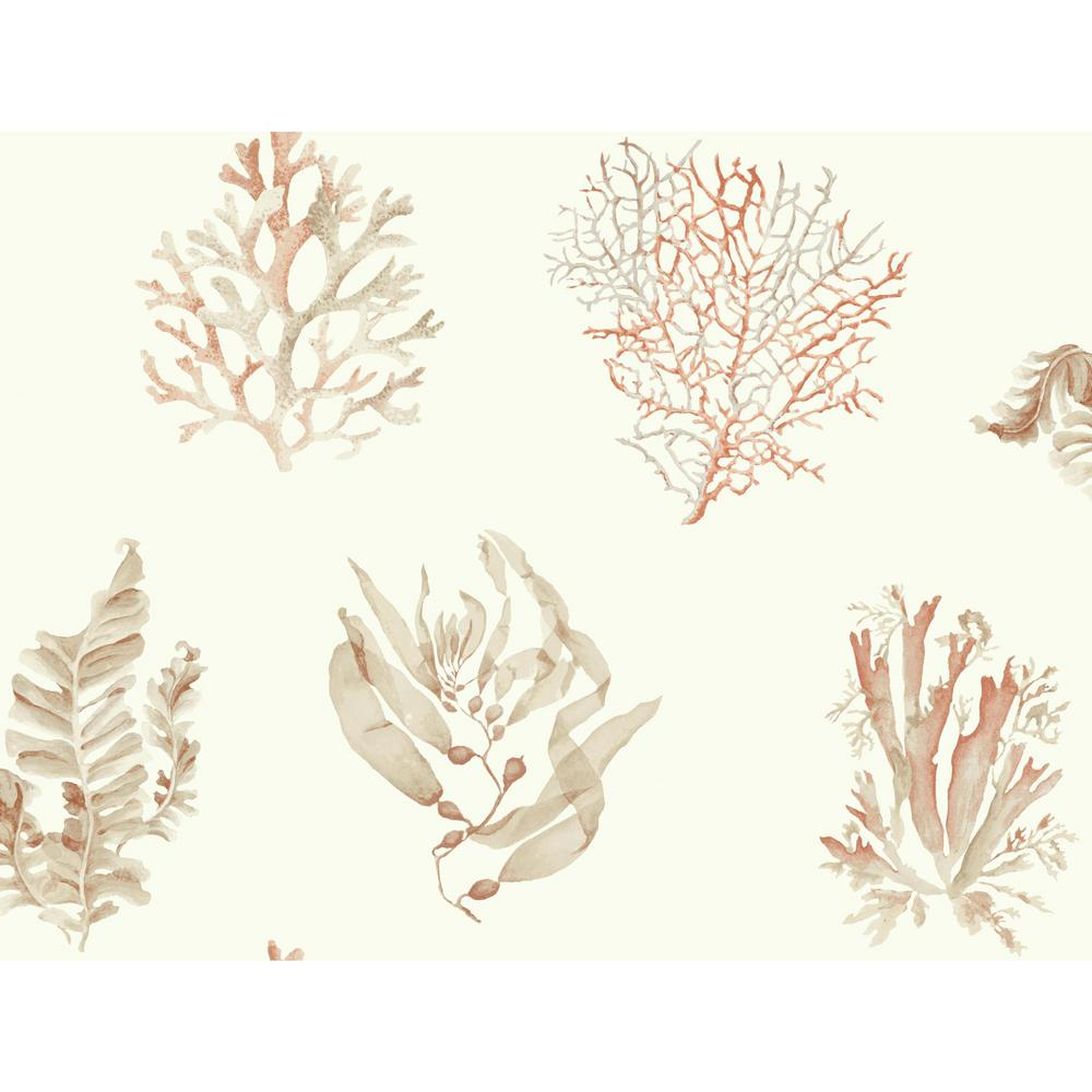 Seaweed Wallpaper