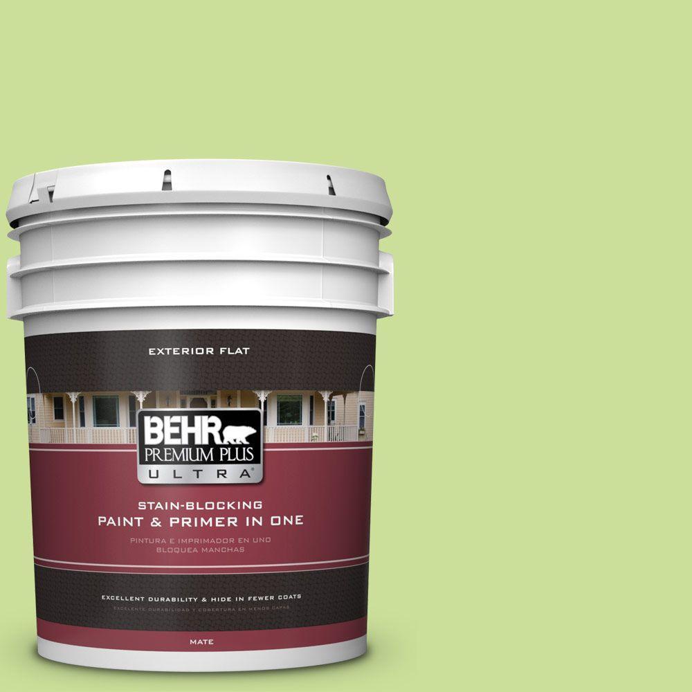 BEHR Premium Plus Ultra 5-gal. #420A-3 Key Lime Flat Exterior Paint