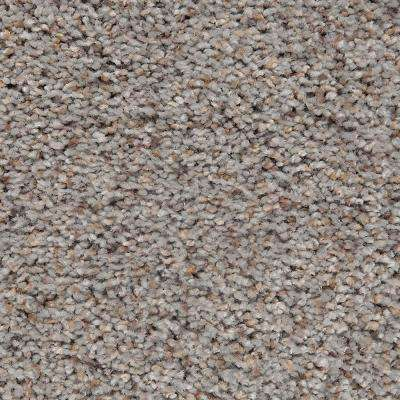 Carpet Sample - Riley I - Color Skylit Textured 8 in. x 8 in.