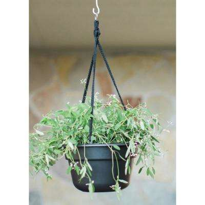 12 x 6.75 Black Dura Cotta Plastic Hanging Basket Planter