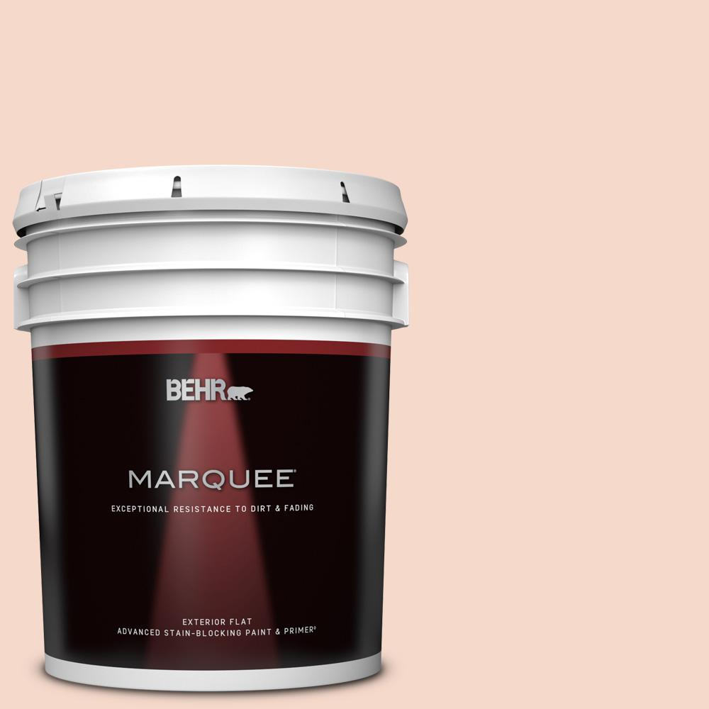 Behr Marquee 5 Gal M190 1 Pink Sea Salt Flat Exterior Paint And Primer In One 445005 The Home Depot