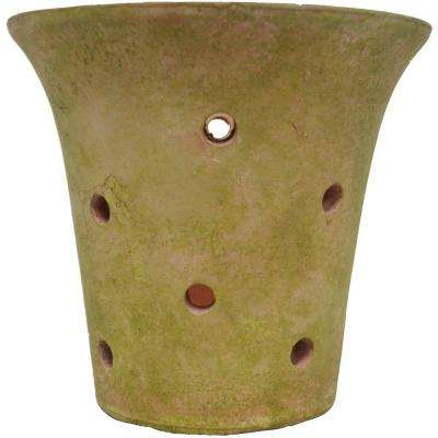 6 in. Rustic Moss-Finish Clay Orchid Pot