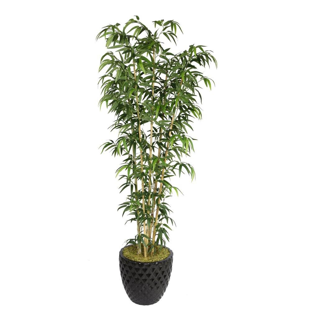78 in. Tall Natural Bamboo Tree in 16 in. Fiberstone Planter
