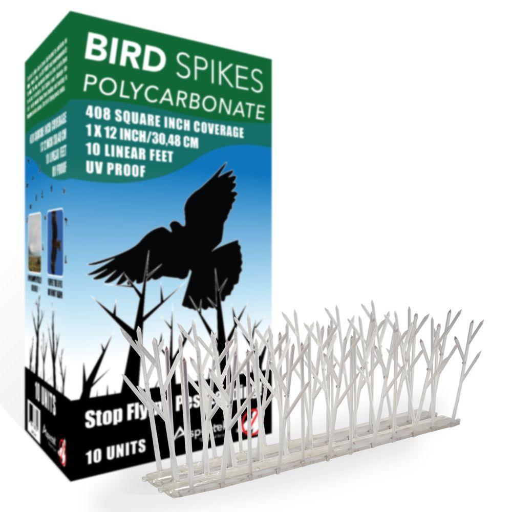 Aspectek 10 ft Plastic Bird SpikesHR411 The Home Depot
