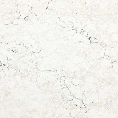 3 in. x 3 in. Quartz Countertop Sample in Whitendale
