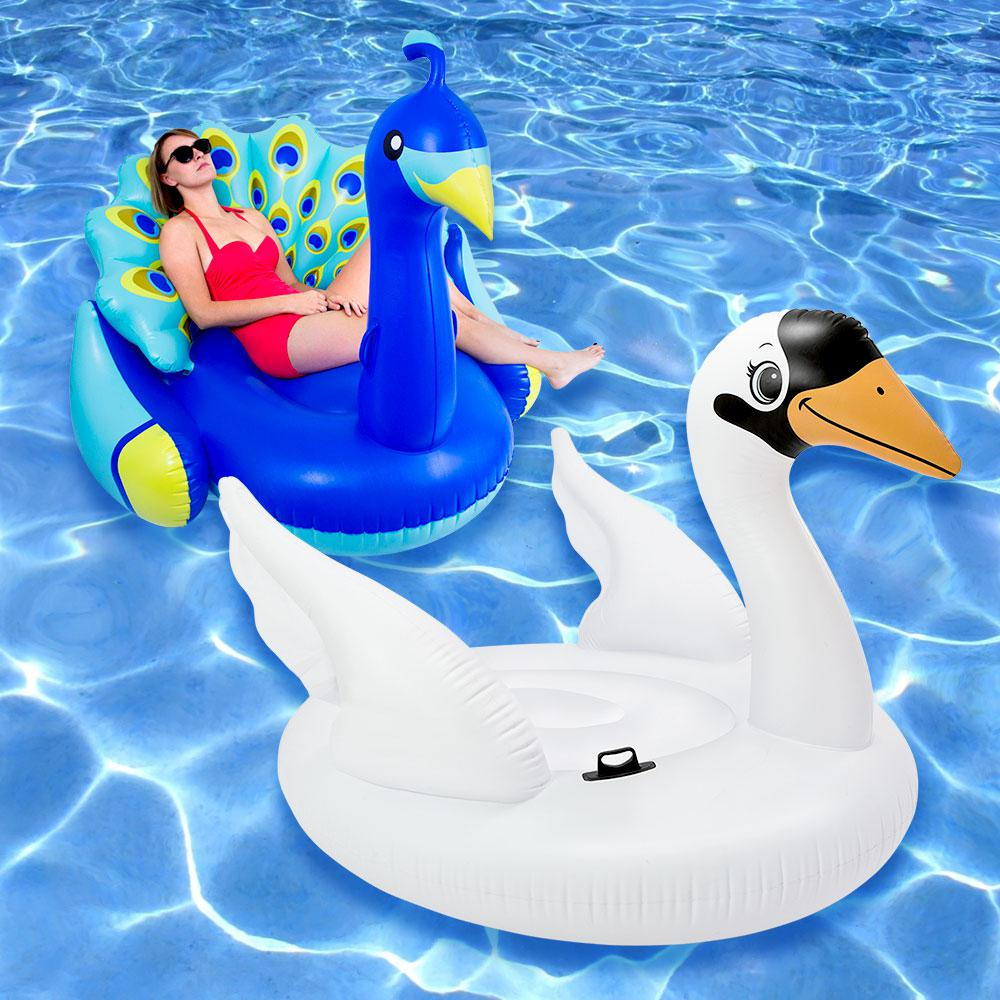 Swimline giant peacock and mega swan island swimming pool for Pack swimming