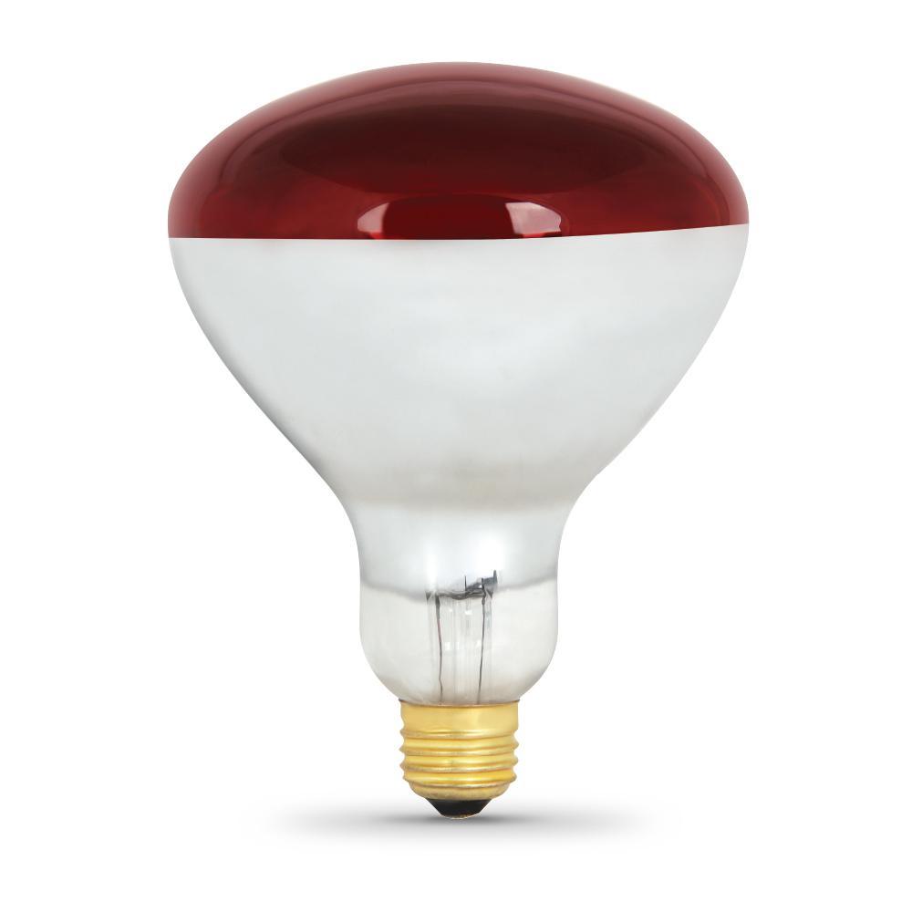 250-Watt R40 Incandescent 120-Volt Red Heat Lamp Soft White (2700K) HID Light Bulb (12-Pack)