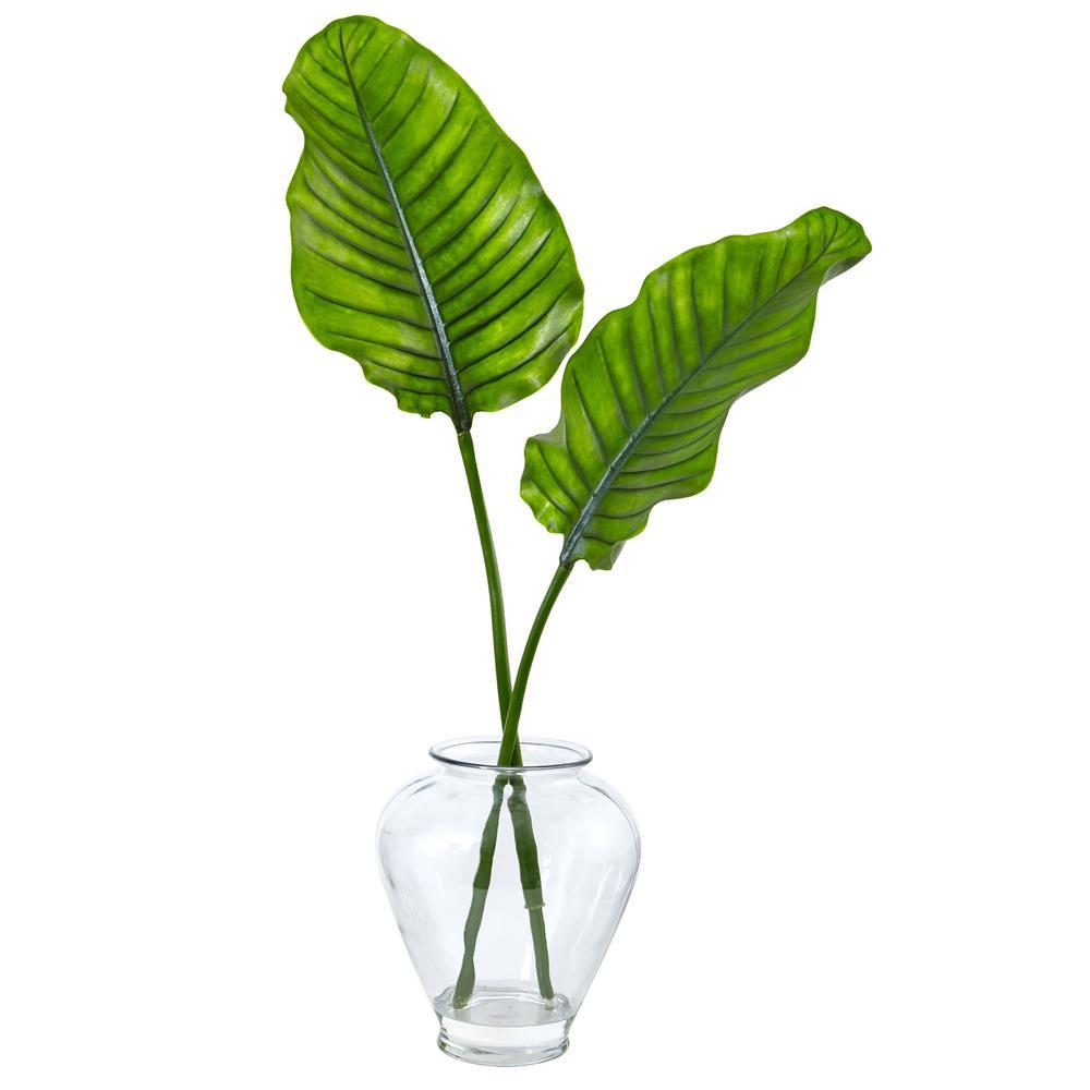 Indoor Travelers Palm in Glass Vase
