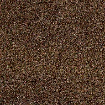 Carpet Sample - Toulon - In Color Spices Texture 8 in. x 8 in.