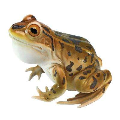 9 in. H Lester The Leopard Frog Statue